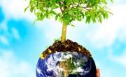 Meio ambiente – conscientização urgente!